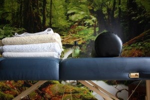 Massage praktijk Langedijk